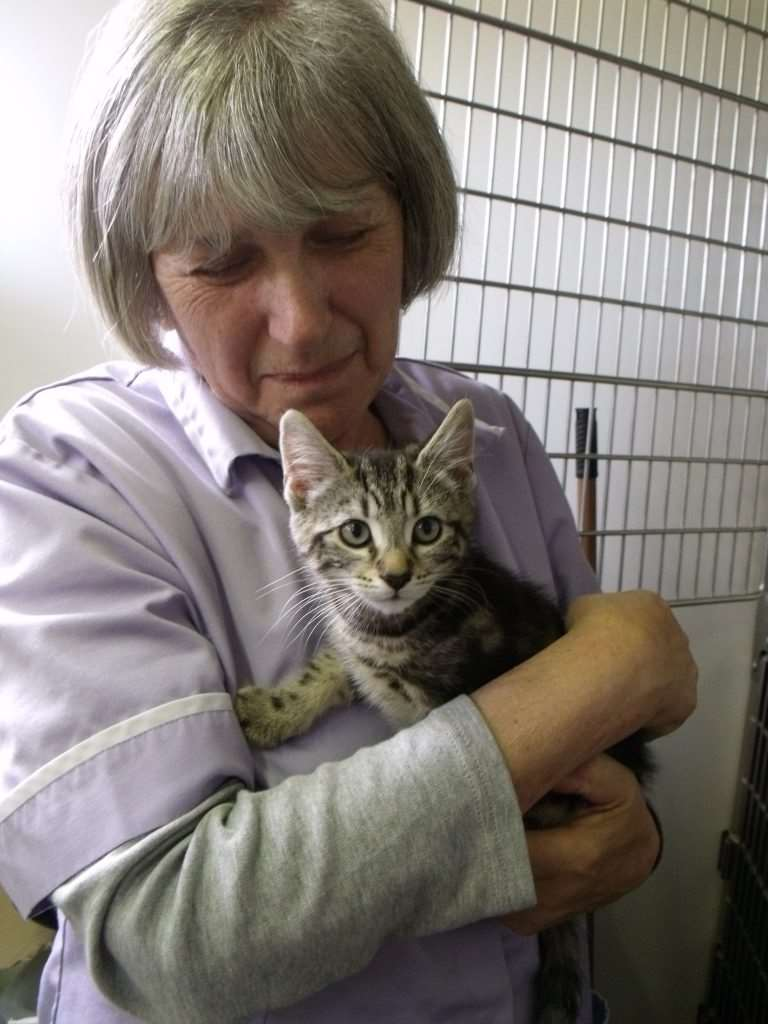The late Janette Frankland of Lymington Cat and Kitten Rescue