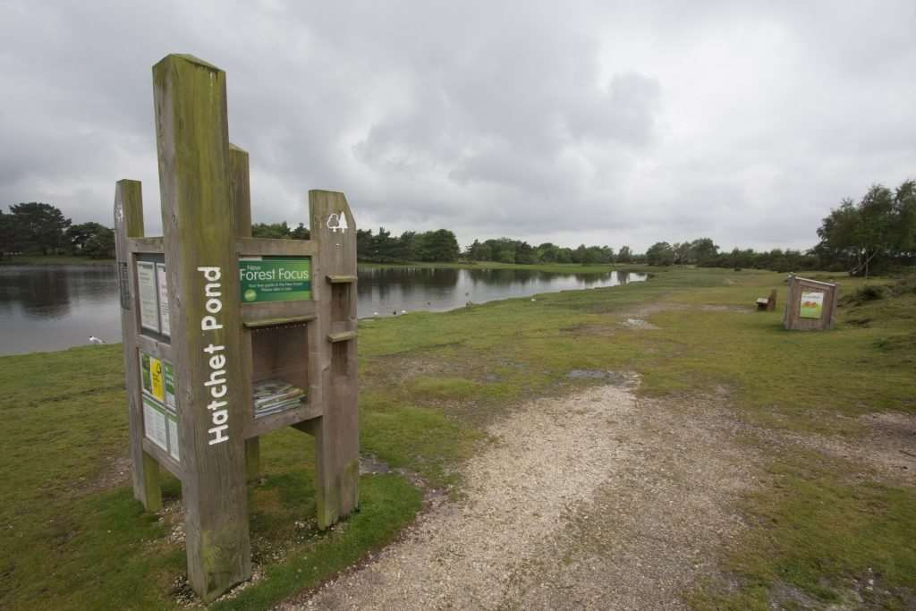 Hatchet Pond has been temporarily closed by the Forestry Commission
