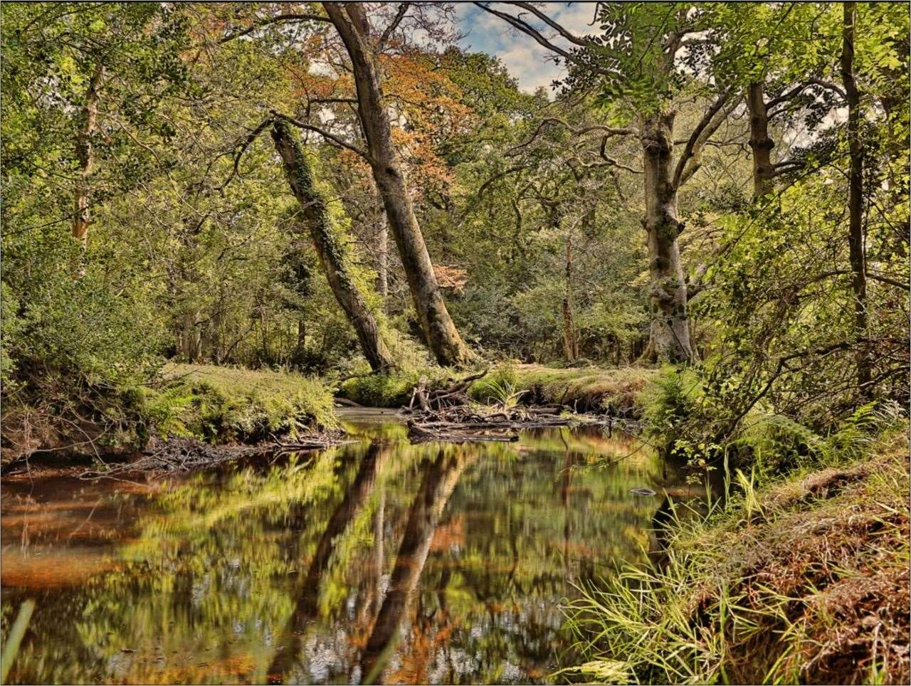 23rd April 2021: Tim Bayliss captured these reflections in a river near Brockenhurst